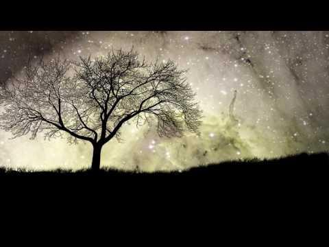 Zara Larsson - Ain't My Fault (R3hab Remix) LYRICS