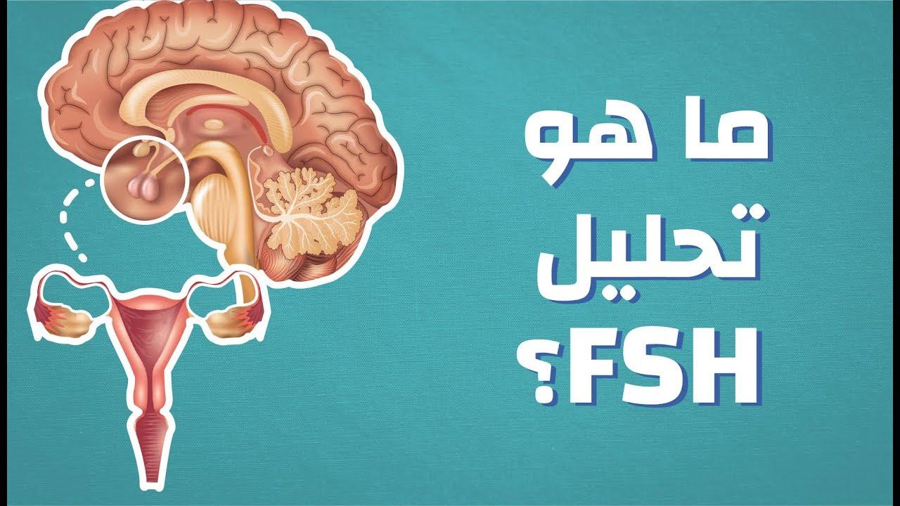 ما هو تحليل FSH #موضوع