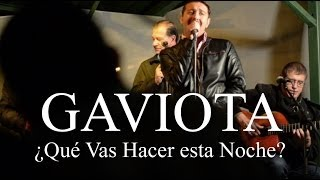 Gaviota - ¿Qué vas hacer esta Noche?  - Momentos Chirraca