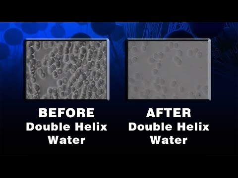 Double Helix Water (Stable Water Clusters): Amazing Before And After Live Blood Analysis Videos