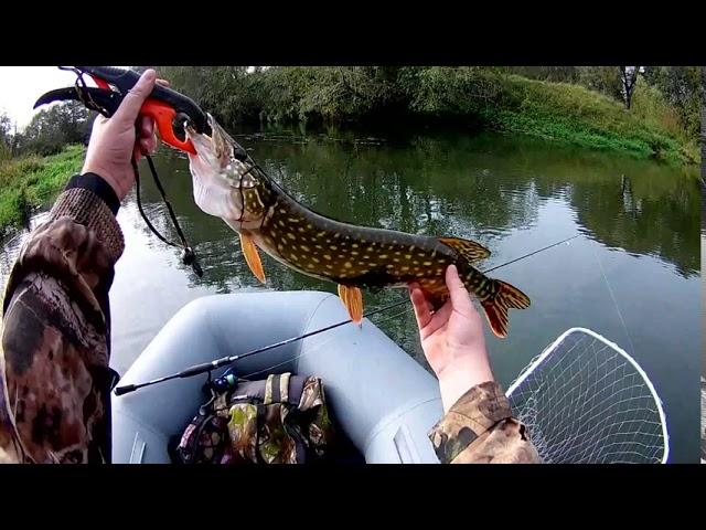 Ловля щуки спиннингом 4 октября 2020 на малой реке