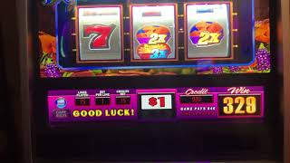 """ Highlimit "" multi denomination Big Win!"