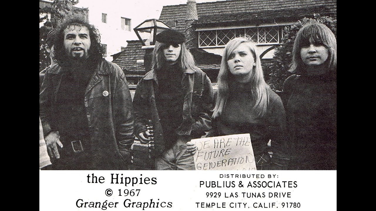 the hippie legacy The hippie legacy can be observed in contemporary culture in a myriad of forms—from health food, to music festivals, to contemporary sexual mores.