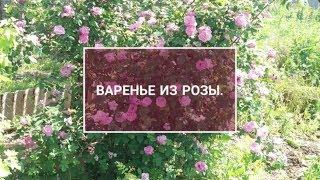 ВАРЕНЬЕ ИЗ РОЗЫ.#варенье#роза#из розы# из чайной розы#без варки#розовое варенье#из лепестков#