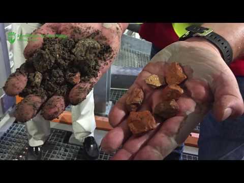 Proyecto europeo de investigación Brick Beach en Vélez-Málaga