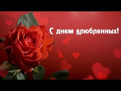 Красивое видео поздравление с днем всех влюбленных! - Лучшие приколы. Самое прикольное смешное видео!