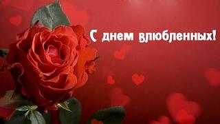 Красивое видео поздравление с днем всех влюбленных!