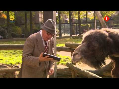 Andre Van Duins Animal Crackers 2013 S01E06