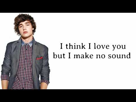 One Direction - Stole My Heart ( Lyrics and Pictures )