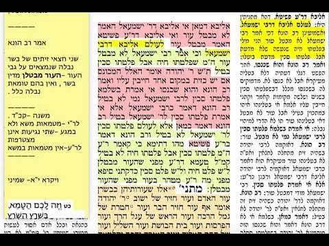 חולין קכב 122שישי כ״ב אדר ב׳ תשע״ט Daf yomi chullin daf 122