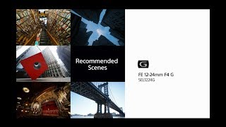 Sony | Lens | FE 12-24mm F4 G | Lens Expert Tips