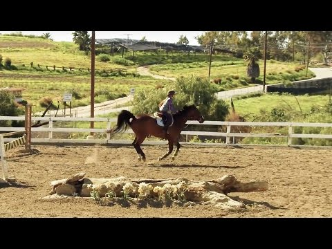 SOLOSHOT3 | Equestrian Filmed with Optic65 Camera