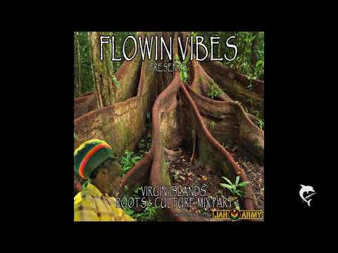 FLOWIN VIBES - VIRGIN ISLANDS ROOTS & CULTURE MIX PART 2