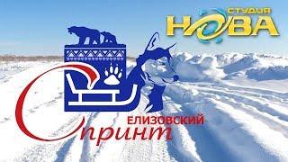 Елизовский спринт 2019