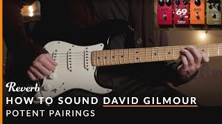How To Sound Like David Gilmour of Pink Floyd Using Pedals | Reverb Potent Pairings