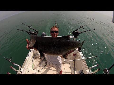 Salmon fishing lake Ontario 2017
