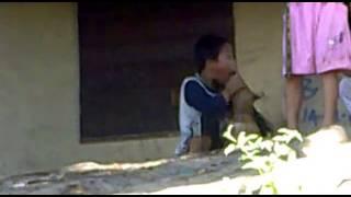 lucu budak mau memperkosa anjing  ngakak abis