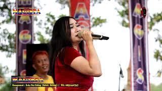 Mawar Putih Intan Vanesa New Magista Live ARB