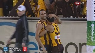 AFL 2013: 1st Preliminary Final - Hawthorn highlights vs. Geelong (HD Version)