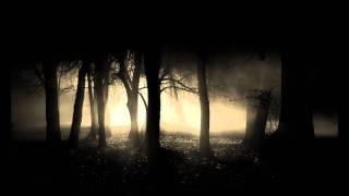 Alva Noto + Ryuichi Sakamoto - Morning + Iano-Second Angle.wmv