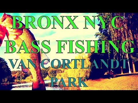 BRONX NYC BASS FISHING - VAN CORTLANDT PARK