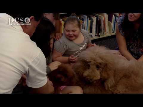 Dogs help ESE students learn at Leila Davis Elementary School