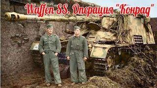 """Красная армия против Waffen SS. Операция """"Конрад"""" - военные истории"""