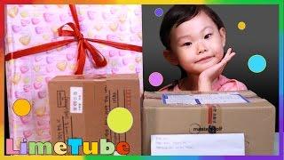 라임팬 선물 개봉기 4탄~고품격 먹는 방송 서프라이즈 장난감 선물상자 Surprise Toys Box | LimeTube & Toy 라임튜브