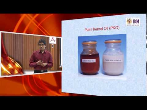 IMK421: Lecture 9 ( 5th December 2012) — Extraction of Palm Oil