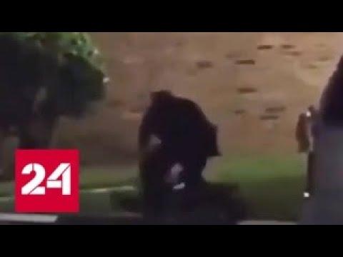 В США полицейский застрелил беременную женщину за сопротивление — Россия 24