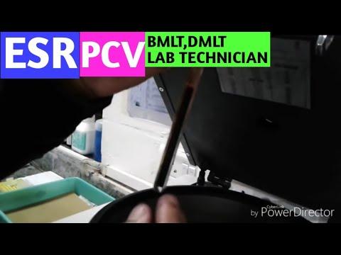 ESR,PCV erythocyte sedimentation rate,packed cell valume