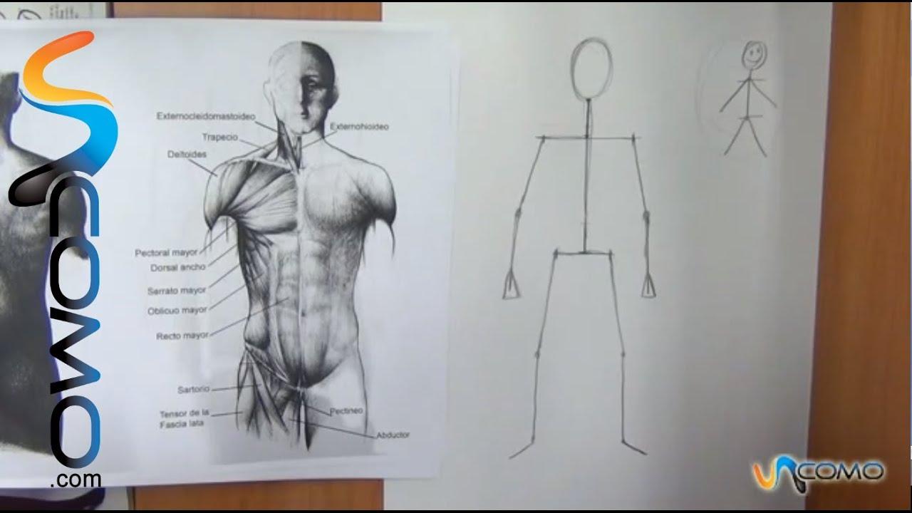 Cómo dibujar el cuerpo humano (1º parte) - YouTube