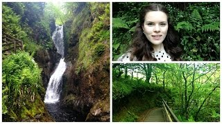 Follow me around - Glenariff Forest Park in northern Ireland! 🍀