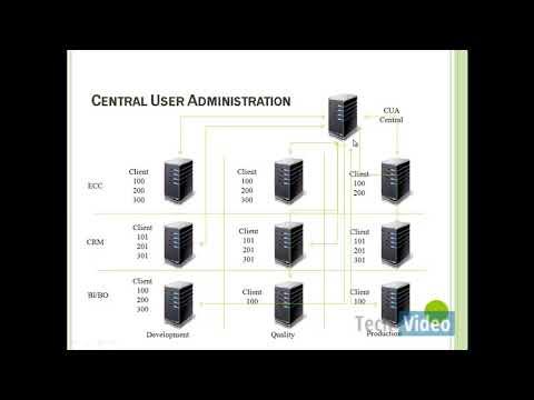 SAP BASIS Central User Administration