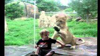 Dzieci w zoo
