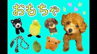 ★初めてのおもちゃ」初めてのシリーズ第二弾!★