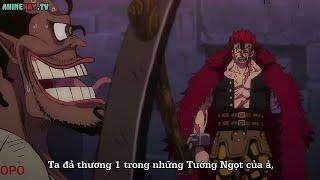 One Piece Tập 923   Nguyên nhân khiến Kid bị cụt một tay