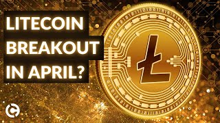 Here is our litecoin price analysis for april 2021! has been on the rise three consecutive days now, and it seems like there's room more gai...