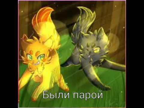 Коты воители огнезвезд и пепелица