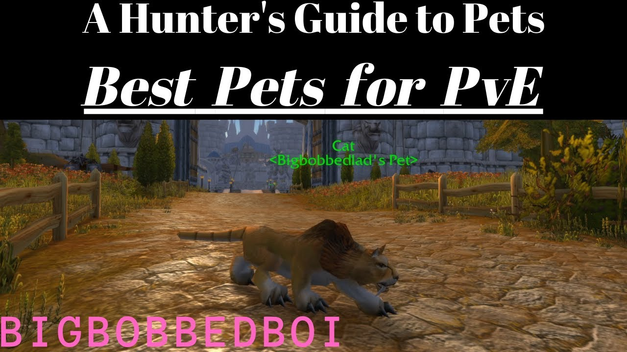 A Hunter S Guide To Pets Best Pets For Pve Classic Wow Tutorial Youtube