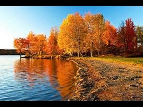 Осень золотая. Релакс ТВ5 - YouTube
