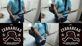 Zebrahead - Down Without a Fight (guitar cover)