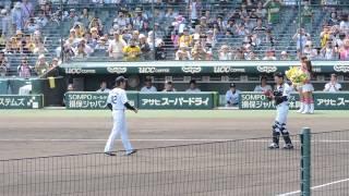 2015.6.28 甲子園 下柳氏・矢野氏ファーストピッチ (下さん中心)
