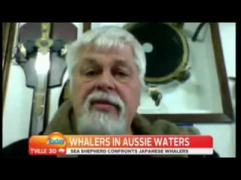 Sea Shepherd Shut Down Japanese Whaling 2013