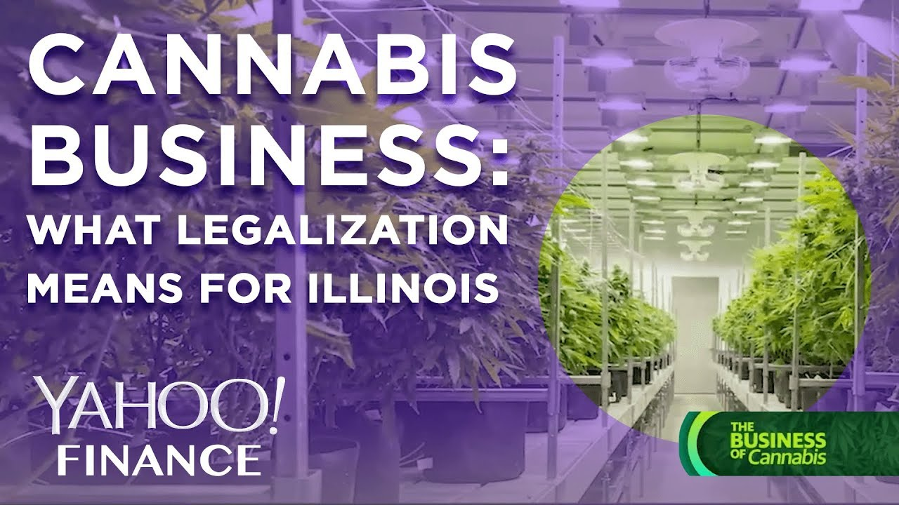 Cannabis business: What marijuana legalization means for Illinois