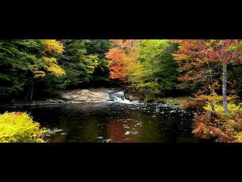 Maine (4k) 'Beyond The Leaves' Drone Film - DJI Mavic 2 Pro