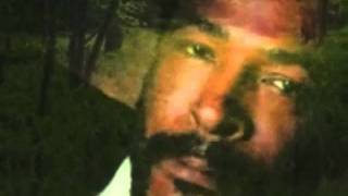 Marvin Gaye - I Won't Cry Anymore (Alternate Version)