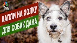 Капли на холку для собак Дана | Обзор капли на холку для собак Дана