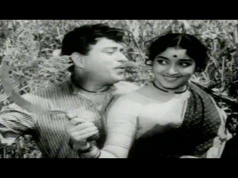 Bangaru Talli Movie Songs || Palle Seema || Jaggaiah || Jamuna