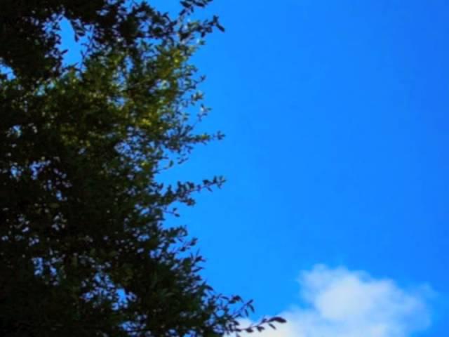 cloud-nothings-strummin-pseudopseud